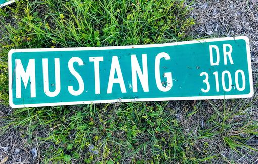 Custom Made Mustang Street Sign Signage