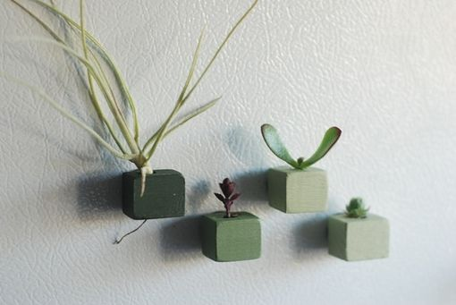 Custom Made Succulent Magnets - Set Of 4 Magnets - Ombre Green Magnets - Party Favor