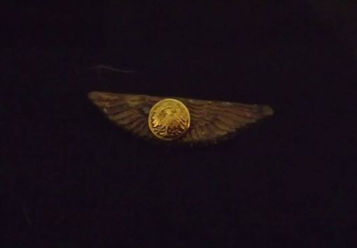 Custom Made Various Steampunk Medals And Wings