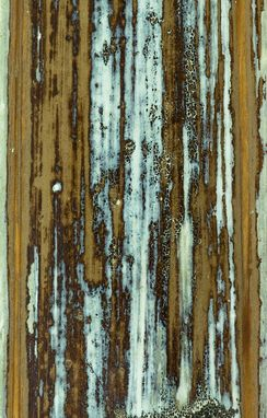 Custom Made Abstract Art, Macro Photography (Wood, Paint, Icy Blue)