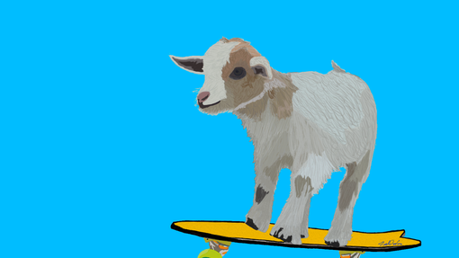 Custom Made Pets On Skateboards Digital Art