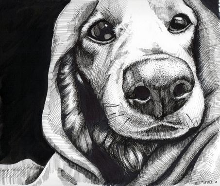 Custom Made Pet Portraits (Black And White)