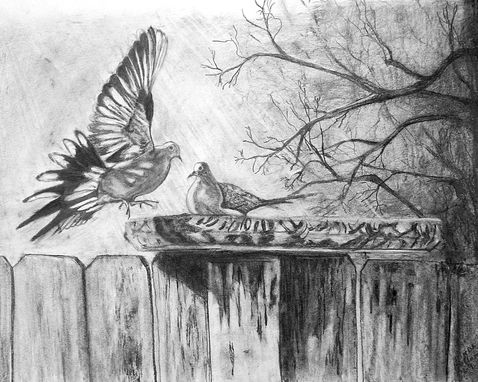 Custom Made Doves Pencil On Paper