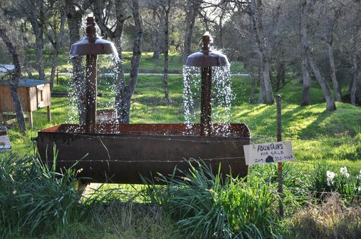 "Custom Made Oil Barrel Water Fountain ""The Double Dose''"