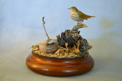 Custom Made Poorwill And Hermit Thrush