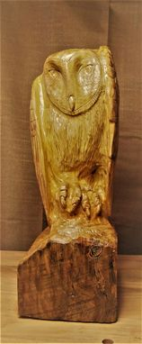 Custom Made Barn Owl Sculpture: