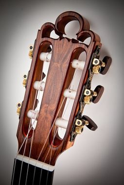 Custom Made 2009 Traditional Guitar