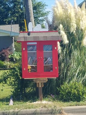 Custom Made Little Free Libraries