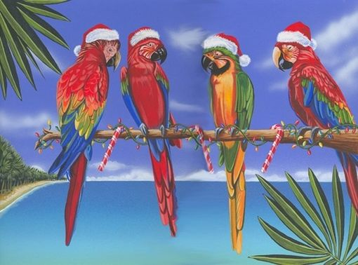 Custom Made Colorful Parrots Of Christmas