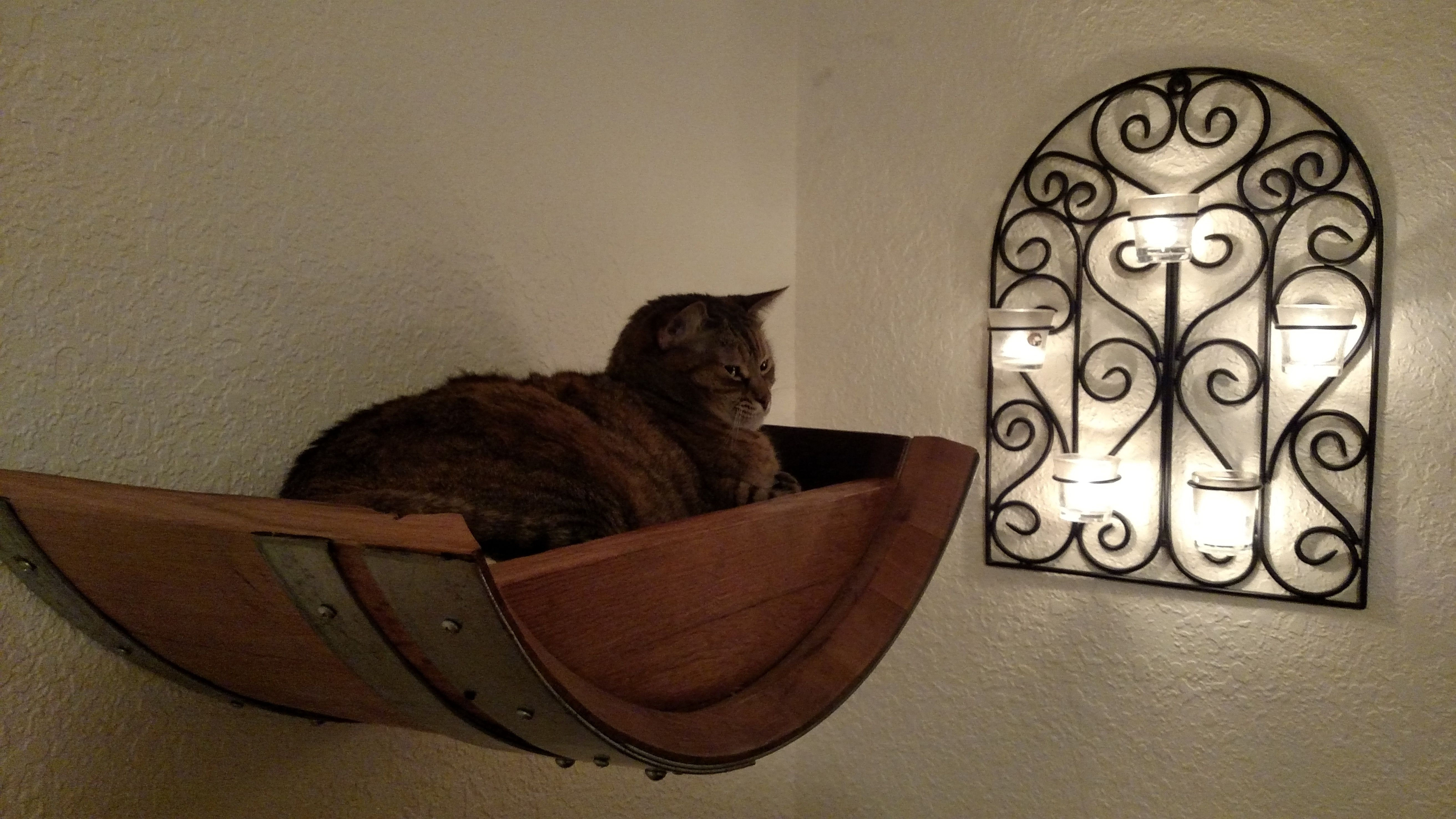Buy A Hand Crafted Birala Wine Barrel Wall Hanging Cat Bed Made To