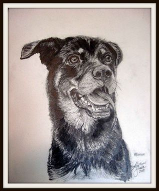 Custom Made Custom Dog Portrait In Graphite