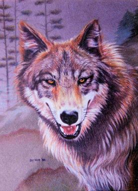 Custom Made Colored Pencil Portrait:  Timber Wolf