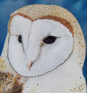 Custom Made Elegant Barn Owl Oil Painting