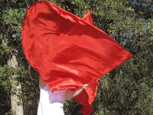Custom Made 2 Single Layer Angel Wings Worship Flags (China Silk), Choose Your Colour
