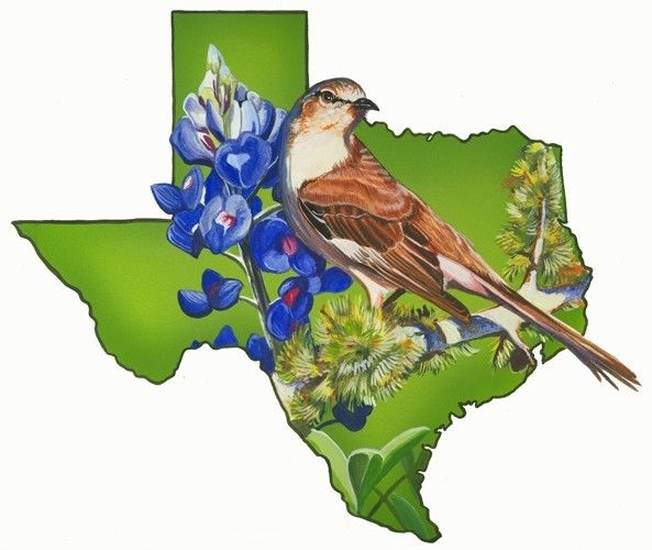 custom made texas state bird and flower