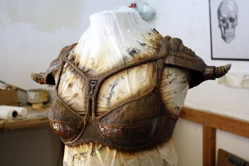 Custom Made Steampirate Bustier