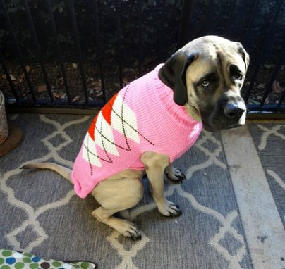 Custom Made Dog Sweater