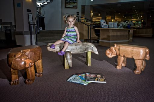 Custom Made Animal Benches At Portsmouth Library