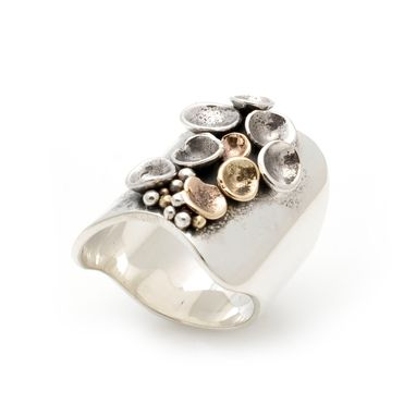 Custom Made Pod Ring With Gold And Silver
