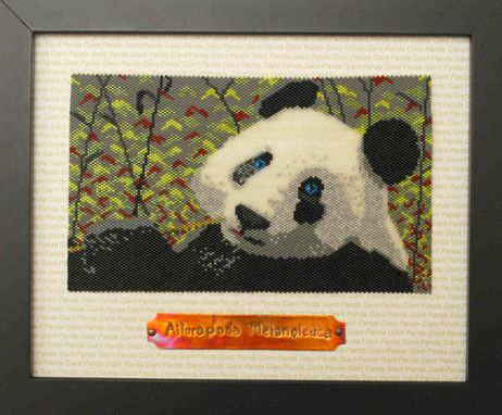 Custom Made Giant Panda Animal Portrait
