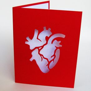 anatomical heart valentine red white cut paper silhouette art greeting card by paula arwen owen - Custom Greeting Cards