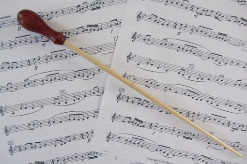 Custom Made Music Conductors Baton - Handmade- Padauk Wood Handle And Birch Wood Tip