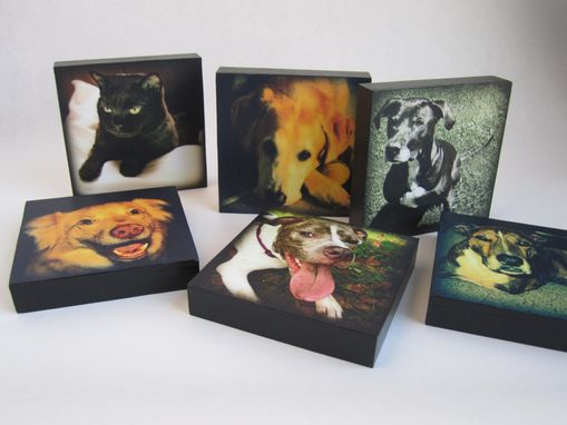 Custom Made Pet Portrait, Pet Memorial