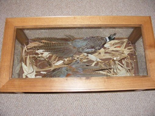 Custom Made Wildbirds Under Glass Coffee Table & End Table