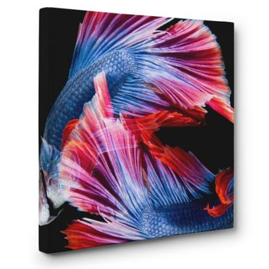Custom Made Betta Fish Canvas Wall Art