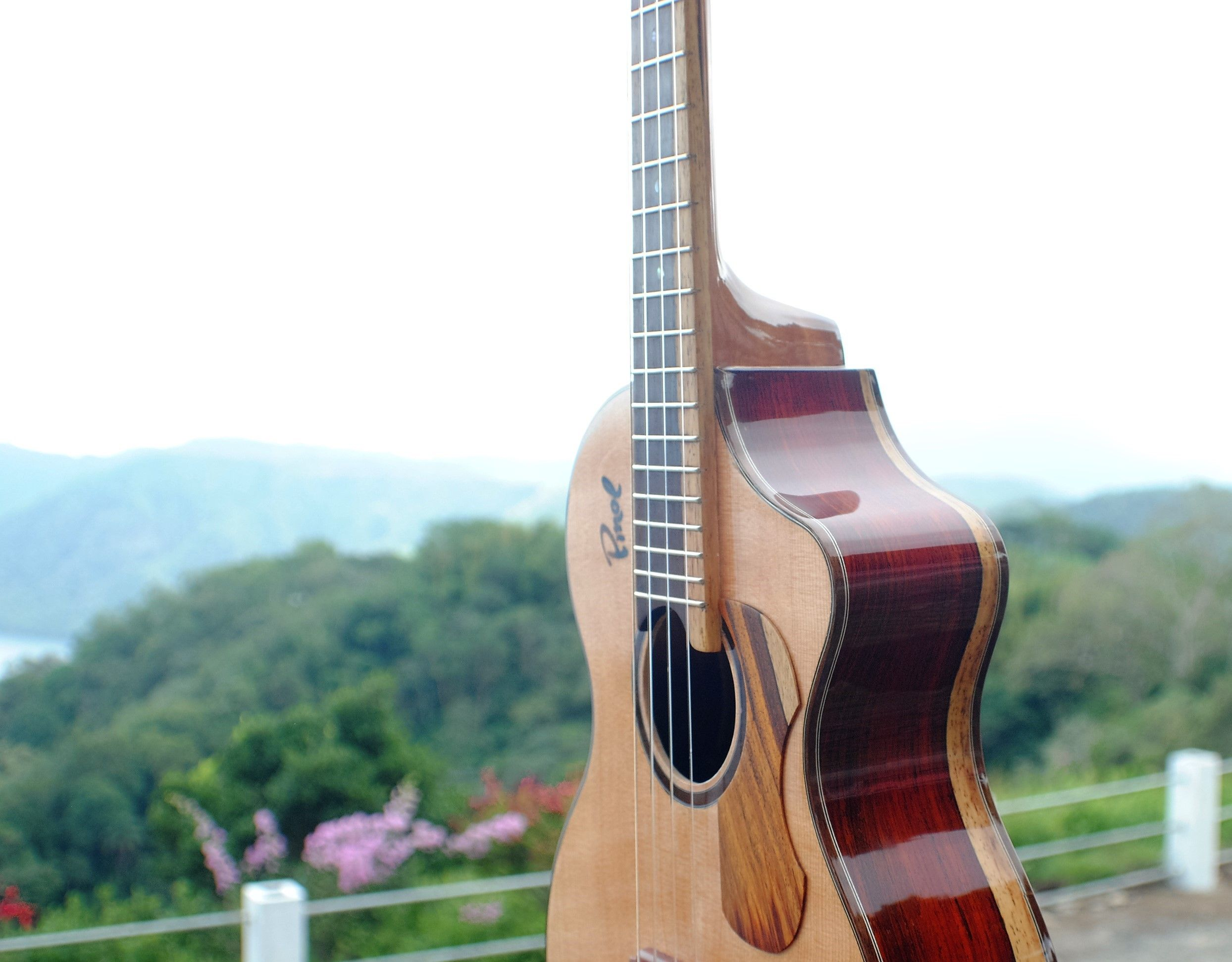 Pinol Guitars Pinol Guitars