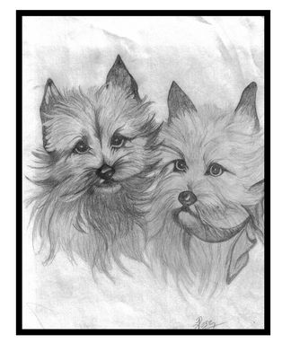 Custom Made Origional Pet Art,Pet Portraits, Pet Drawings, Pet Lovers Gift Idea, Pet Memorial, Pet Tribute