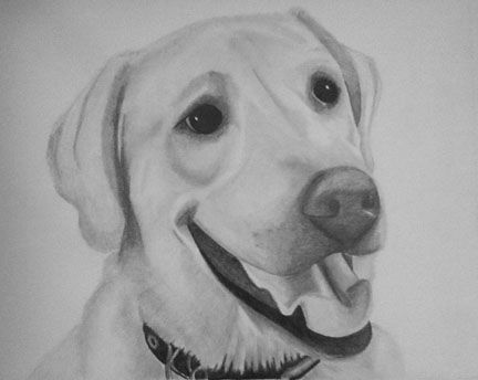 Custom Made Custom Pencil Portrait