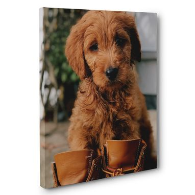 Custom Made Cute Puppy With Boots Photography Canvas Wall Art