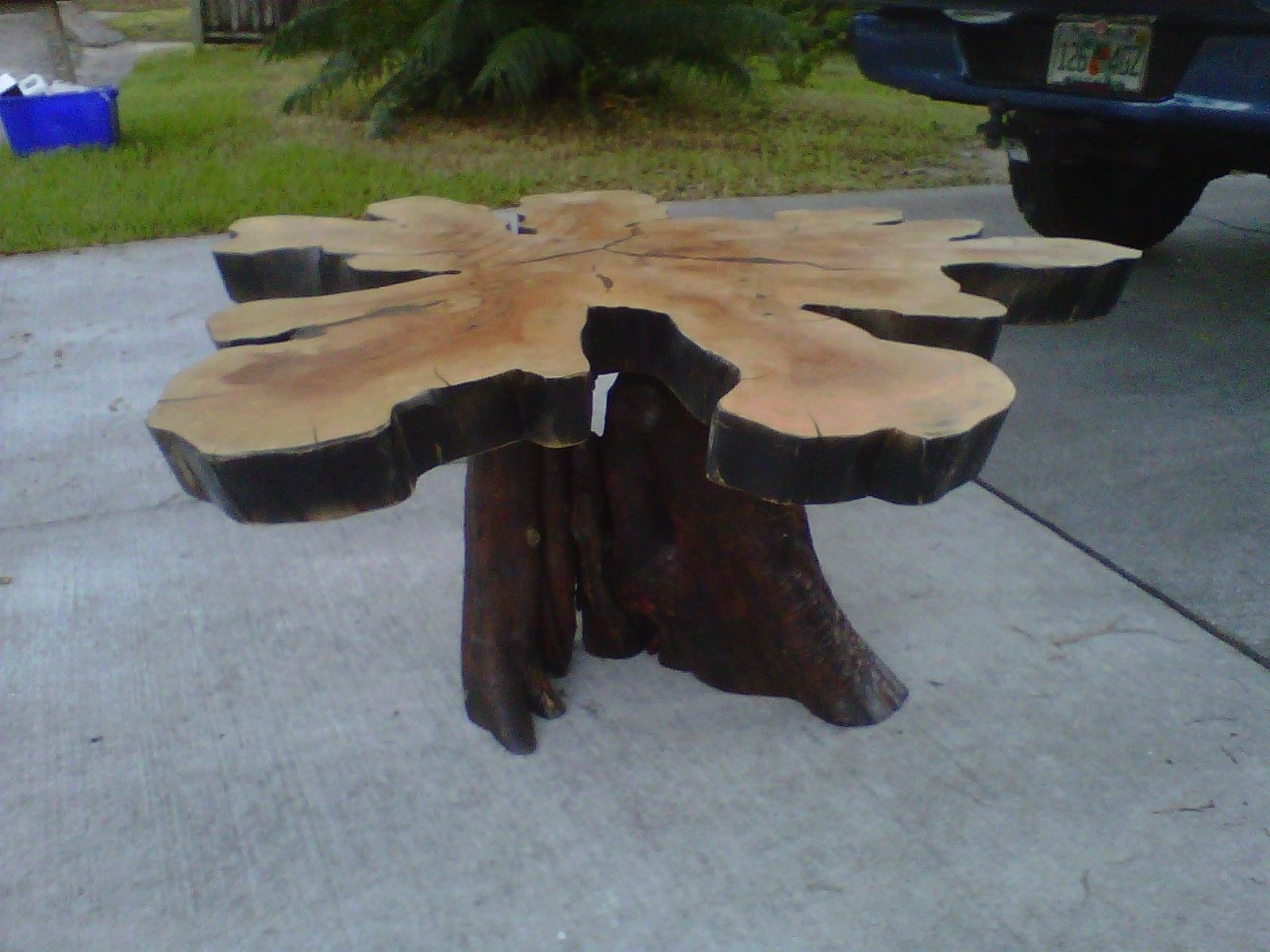 Handmade Live Edge CrossSection Coffee Table By Rustic Wonders - Cypress stump coffee table