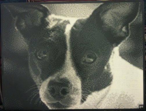 Custom Made 3d Halftone™
