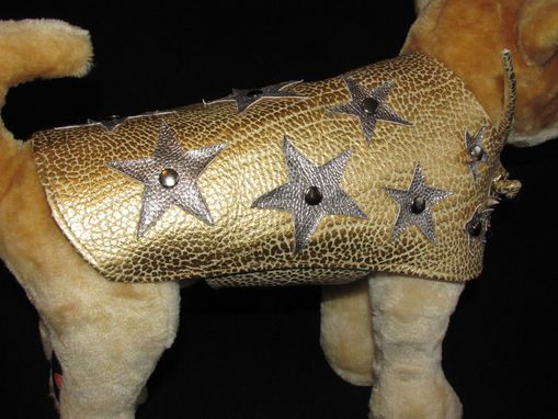 Custom Made Starry, Starry Nite Metallic Leather Dog Coat