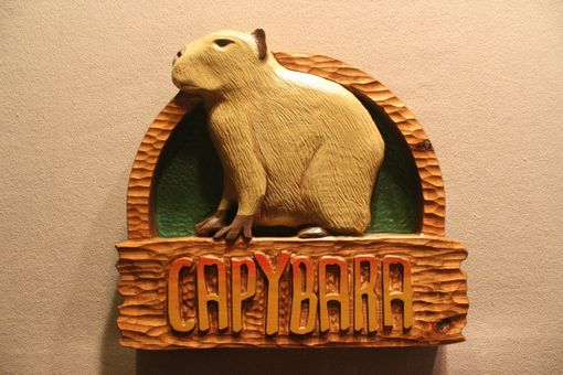 Custom Made Zoo Signs | Animal Signs | Wildlife Signs | Custom Carved Wood Signs By Lazy River Studio