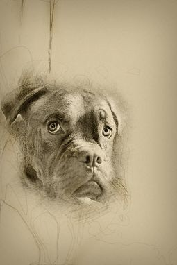 Custom Made Custom Portrait Pencil Sketch From Photo (Digital Delivery)