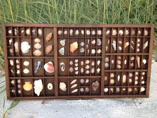 Custom Made Repurposed Sea Shell Printers Tray