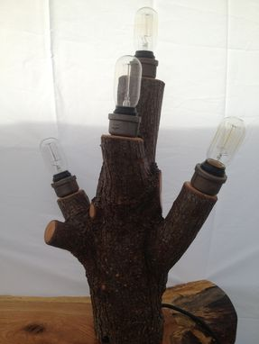 Custom Made Log And/Or Antler Lights & Lamps