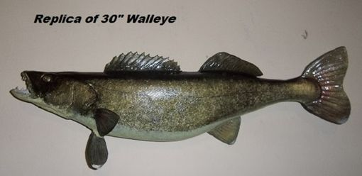 "Custom Made Handdcarved And Handpainted Replica Of 30"" Walleye"
