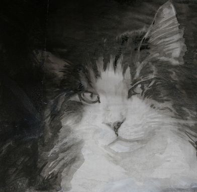 Custom Made Clairvoyance-Animal Portrait