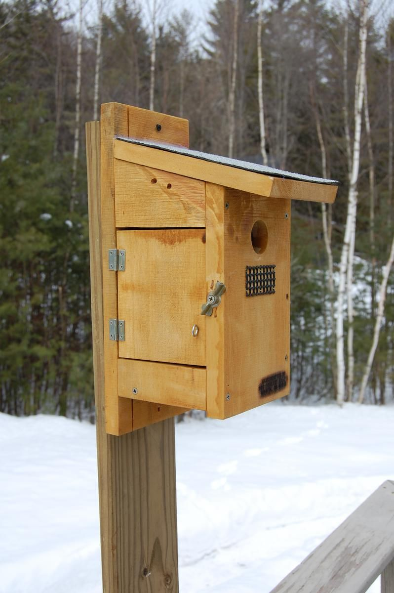 Custom Made Blue Bird House With Side View By P Amp S Country