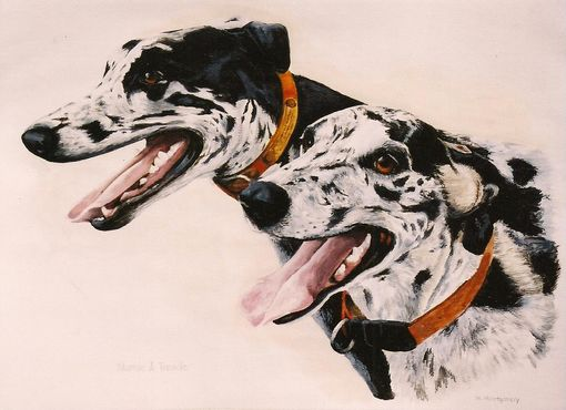 Custom Made Animal Portraits