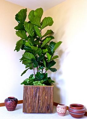 Custom Made Showcase Your Favorite Interior Plants In Beautiful Naturally Inspired Planter Boxes